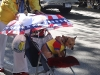 Puerto Rican Doggie at the Hispanic Parade