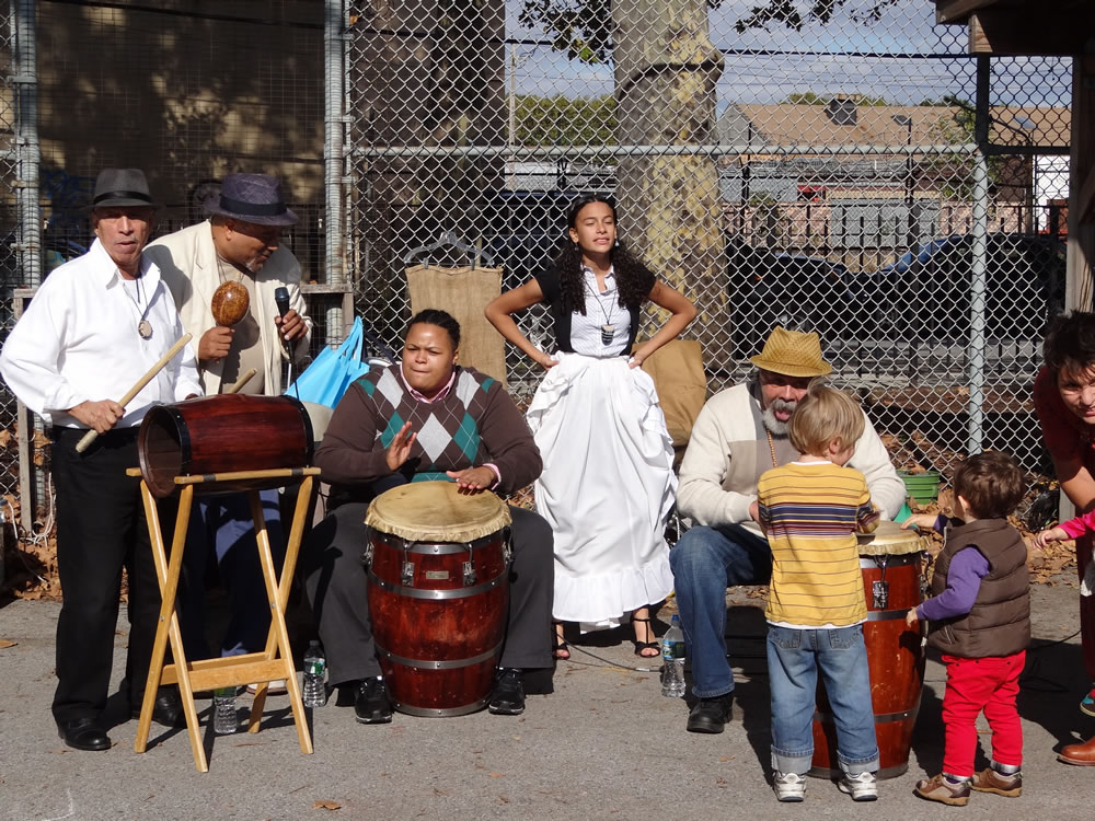 latin band at the harvest